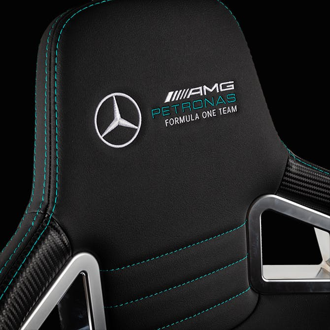 Mercedes-AMG Petronas Formula One Team - 2021 Edition